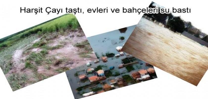 Harşit Çayı taştı, evleri ve bahçeleri su bastı