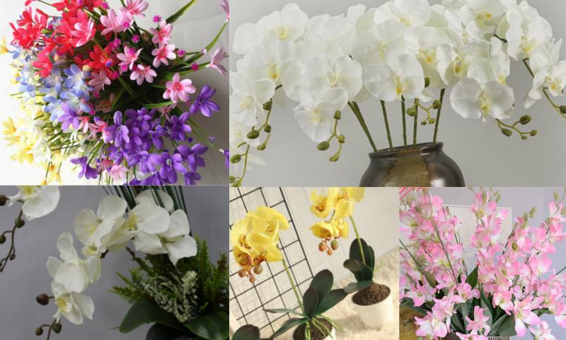 Orkideler ve Diğer Çiçekler